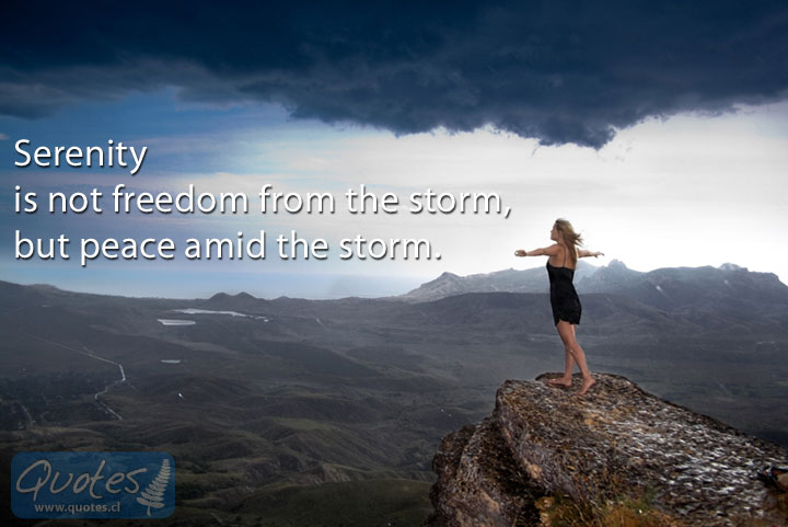 Serenity Quotes | Serenity Is Not Freedom From The Storm Quotes
